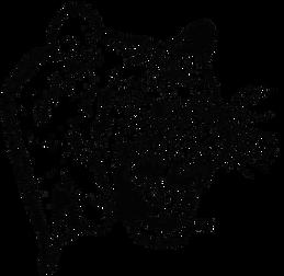 Hardee Tiger