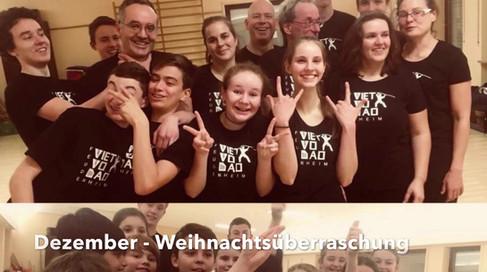 Viet Vo Dao Jahresrückblick 2017