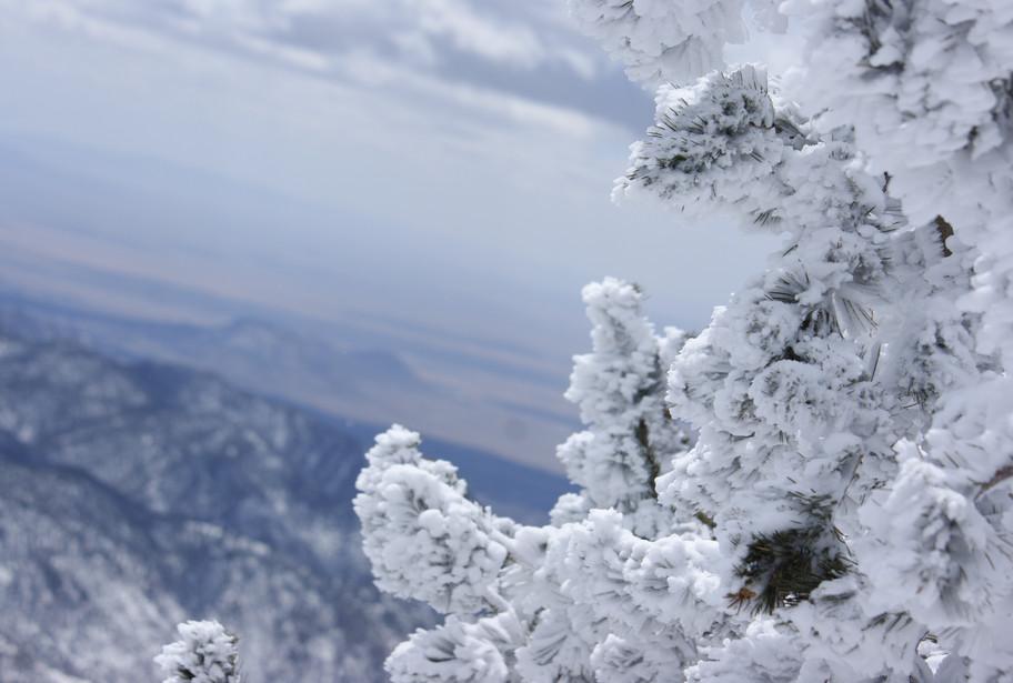 Winter in NM