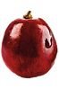 single-grape-png-6.png