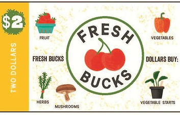 fresh bucks currency.jpeg