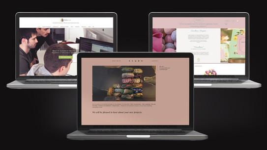 Diseño de web elandbo.com tomsbiolab.com versallesas.com massielruiz.com