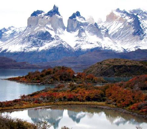 Senado aprueba proyecto que crea Servicio de Biodiversidad