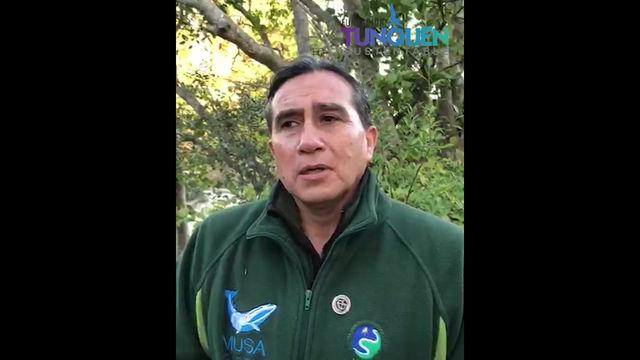 VIDEO: Expertos visitan zona sur de playa de Tunquén