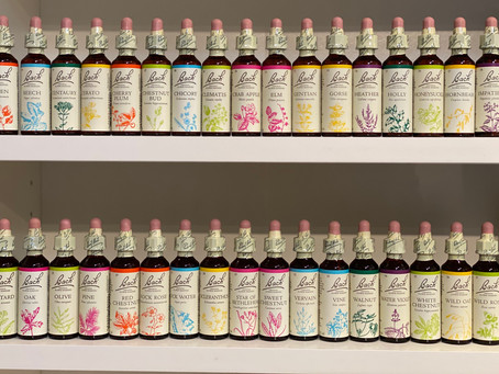 Bach Flower Remedies for Anxiety