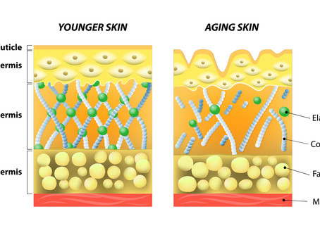 The Benefits of Supplementing Collagen