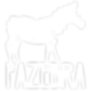FAZEBRA-bianco.png