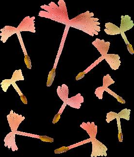 dandelions-4321867_1920.png