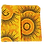 Thumbnail: ROXANNE POUCH - SHWESHWE YELLOW SUN