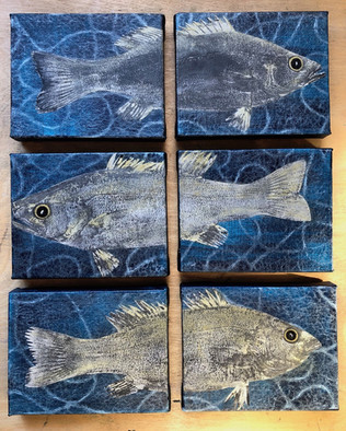 "Small Mouth Bass Series I, II, III 6x 4""x5"" 2019"