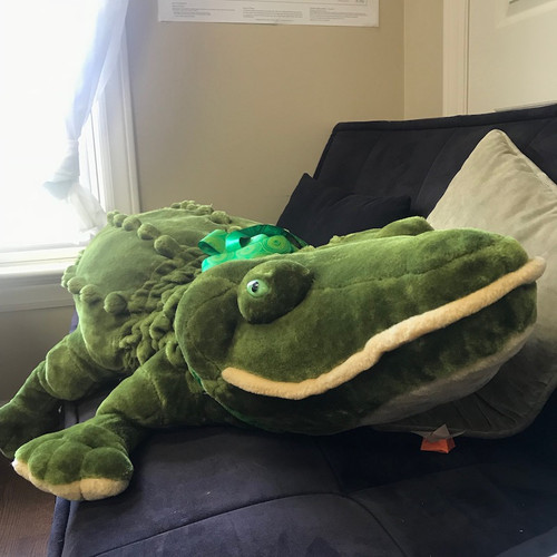 Large Cuddly Croc