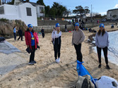 Flossie and the beach cleaners - Workshops on the beach