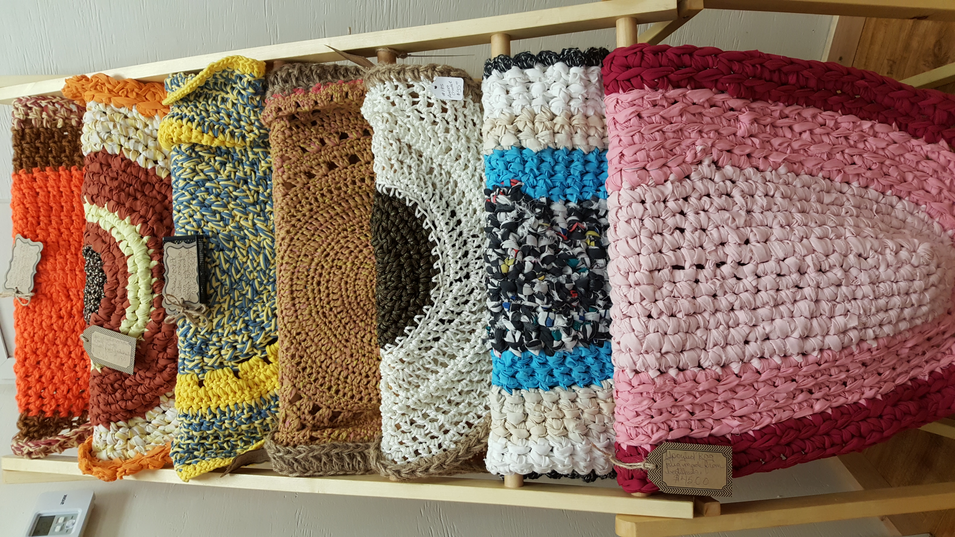 Anoles Crochet
