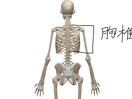 あなたの腰が痛くなる本当の原因と対策③運動後の痛み