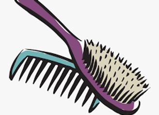 Hairbrush/Comb