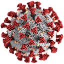 covid-19-virus.png
