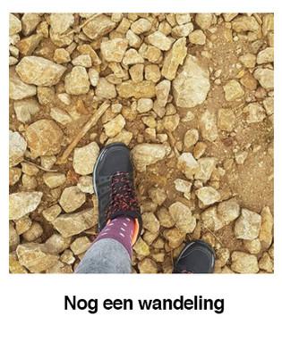 Nog-een-wandeling.jpg