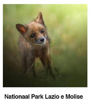 Nationaal-park-Lazio-e-Molise.jpg