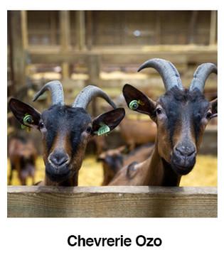 Chevrerie-Ozo.jpg