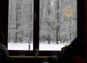 Winter ... herfst ... lente ....