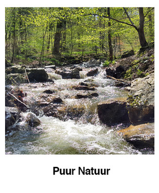 Puur-Natuur.jpg