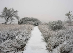 Een beetje winter...❄