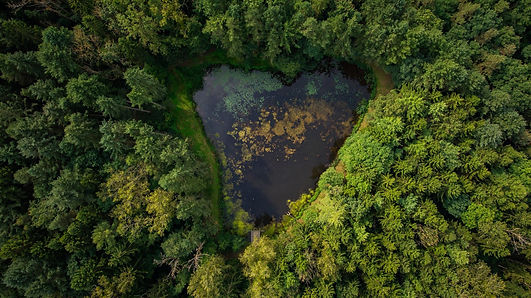 Fall in Love ... Belle gite.jpg
