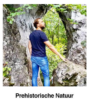 Pre-historische-Natuur.jpg