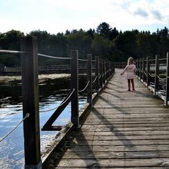 trois-jours-dans-le-Parc-Regional-du-Morvan.jpg