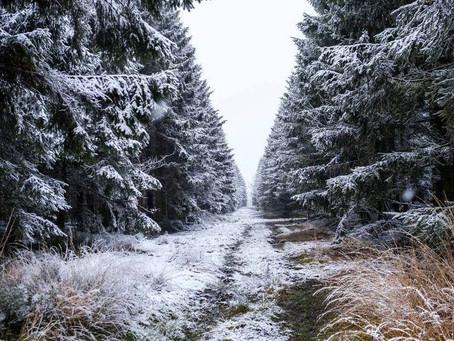De 1e sneeuw