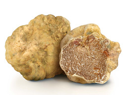truffe bl