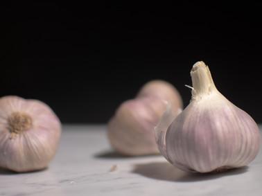 Still Life | Garlic