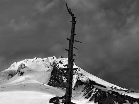 Peaks + Valleys