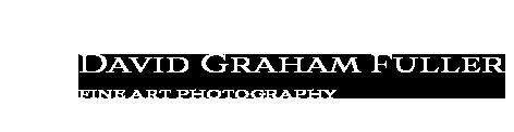 DGF horizontal logo web white.png