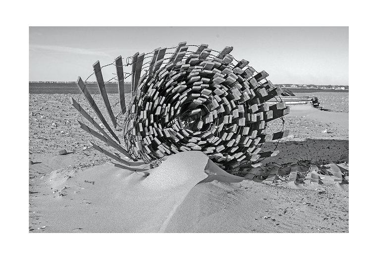 26846 Dune Fencing