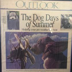 CH. Old York's Summer Daze