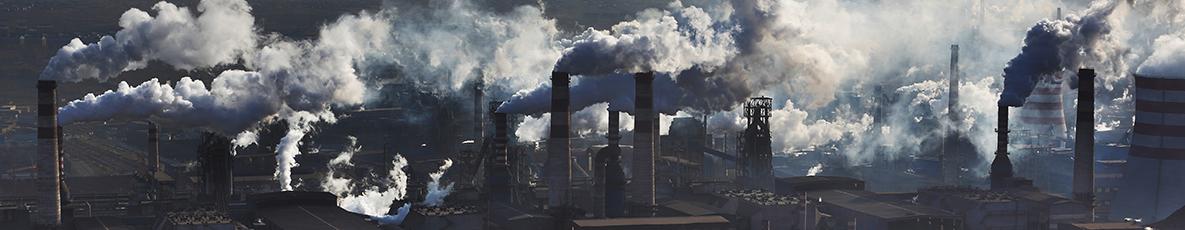 זה אנחנו או הפחם