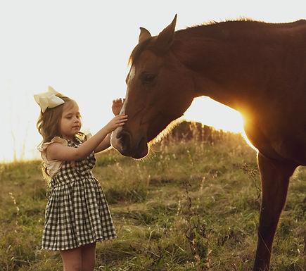 horse-3970041_1920.jpg