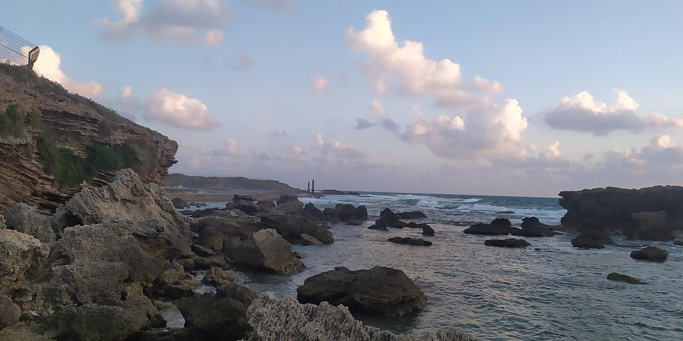 לטייל עם אולגה לאורך הים בשמורת גדור