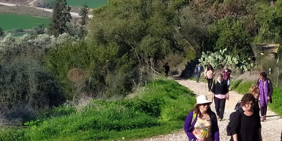 טיולי נשים 50 + לטרון  -נווה שלום - מצפה הראל