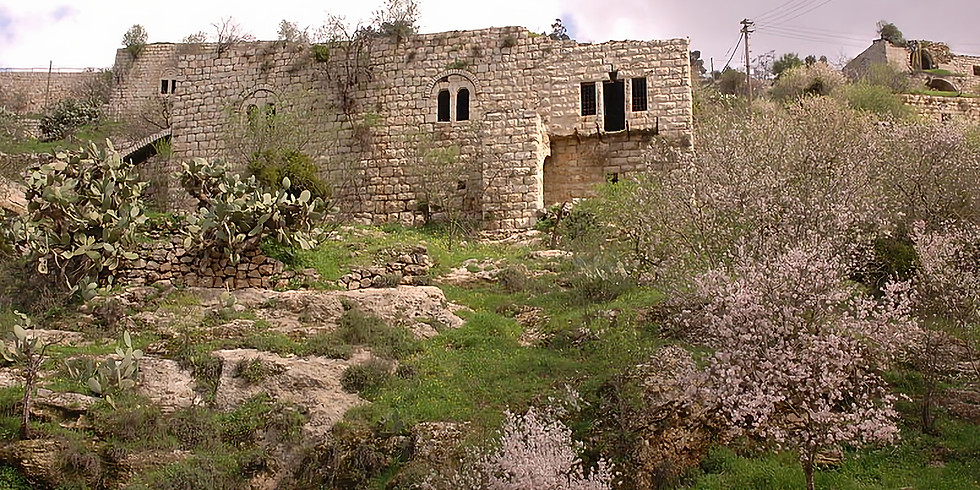 בינות בתי ליפתא לעמק ארזים