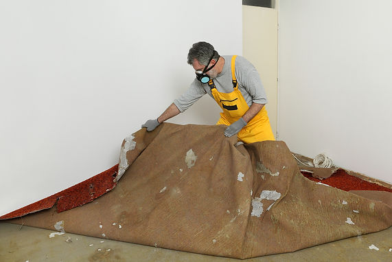 Old Carpet removal_GR3.jpg