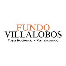 LOGO FV - Anapaola Cruz-saco.jpg