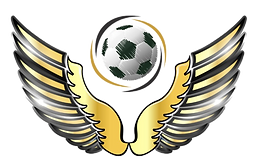 Logo%20Vilhena_edited.png
