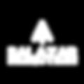 logo_site_salazar_bco.png