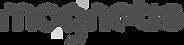 email-signature-logo-magnetis-2018_edite