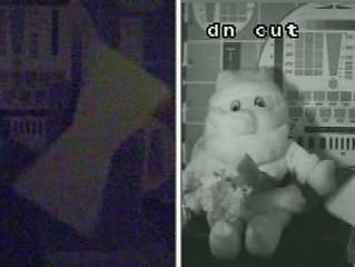 Камеры день-ночь в ночном наблюдении