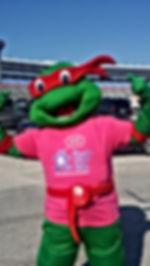 barney minnie spiderman, dallas Hello Kitty PARTY, doc mcstuffins mickey dora Ninja Turtle elmo