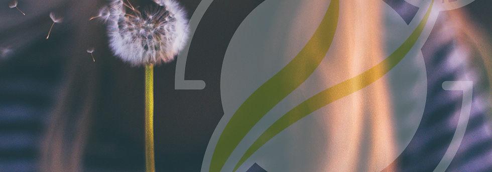 CORSI dal VIVO - banner TUAV formazione.