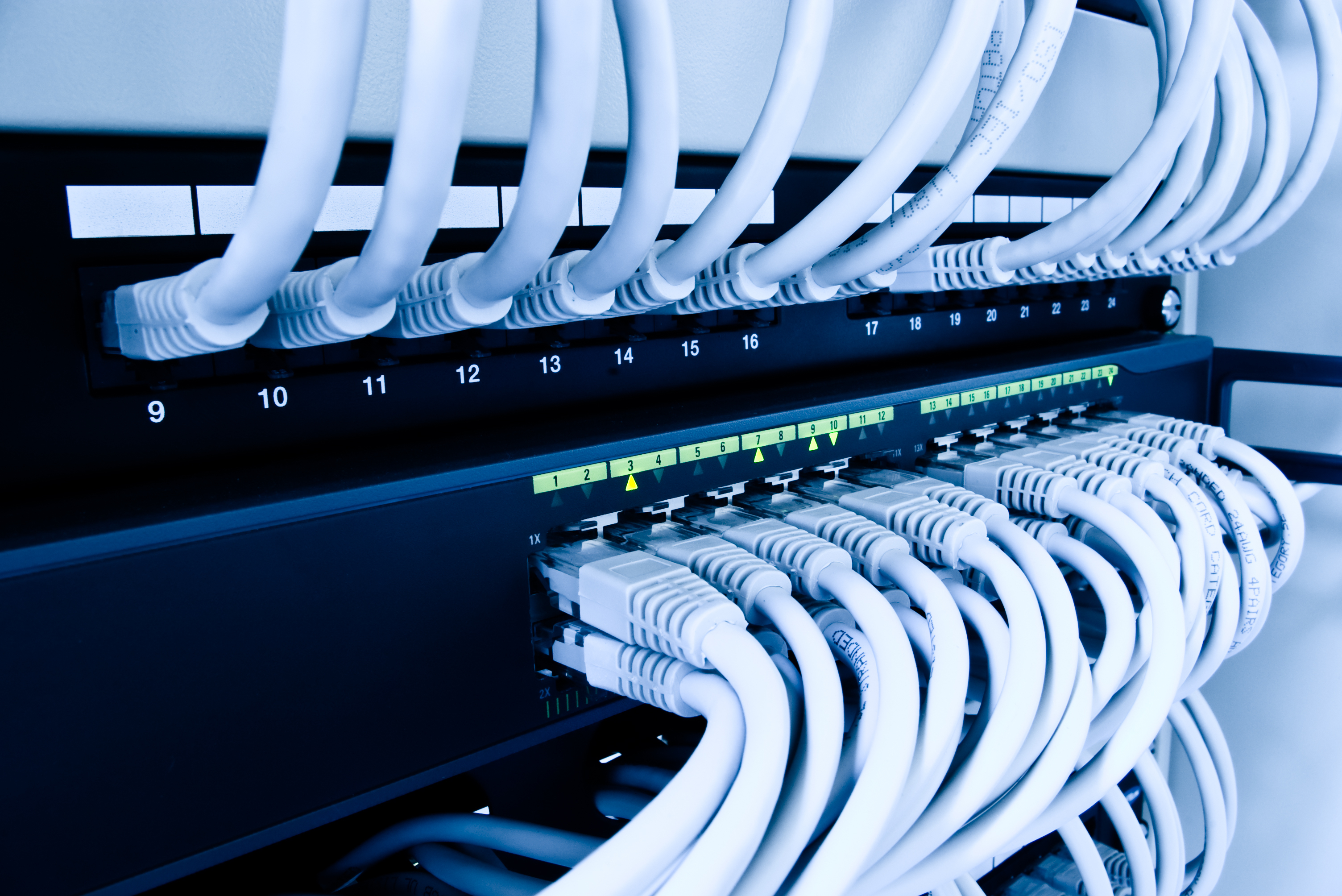 cables patch panel and network switch.jpg